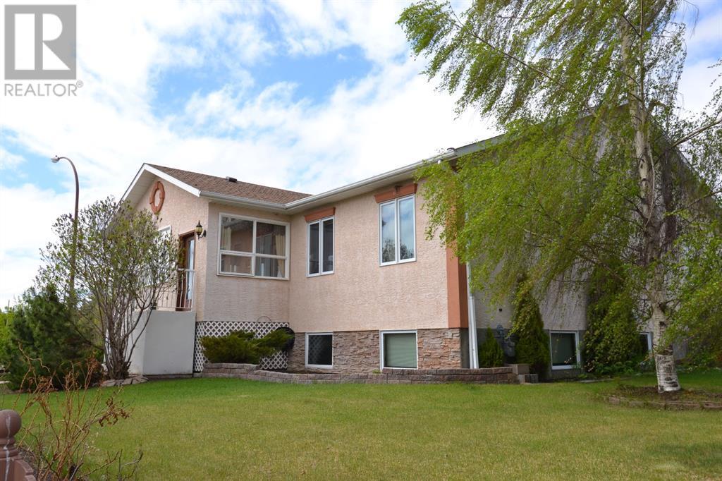 801 10 Avenue Ne, Three Hills, Alberta  T0M 2A0 - Photo 4 - CA0191488