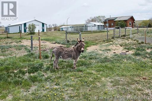 16008 Range Road 23, Rural Cypress County, Alberta  T1A 7E8 - Photo 3 - MH0168112