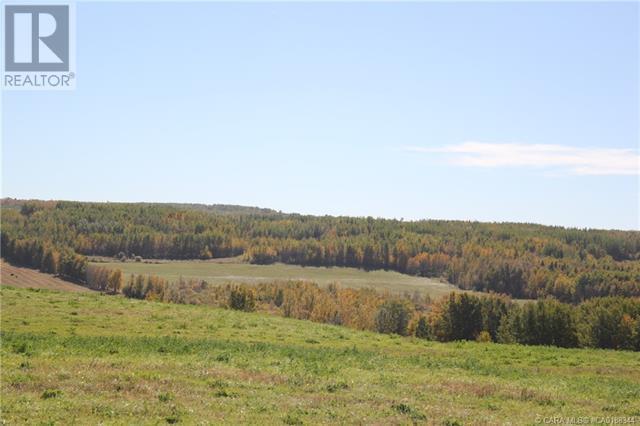 452060 Range Road 14, County Of, Alberta  T0C 2V0 - Photo 8 - CA0188344