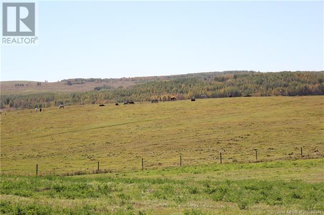 452060 Range Road 14, County Of, Alberta  T0C 2V0 - Photo 28 - CA0188344