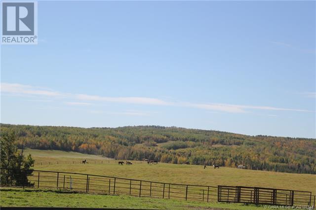 452060 Range Road 14, County Of, Alberta  T0C 2V0 - Photo 29 - CA0188344