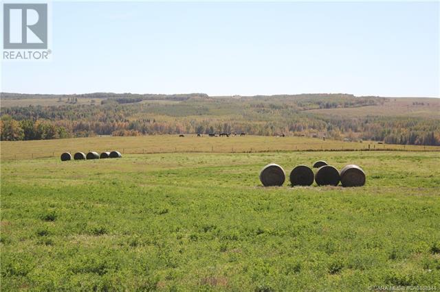 452060 Range Road 14, County Of, Alberta  T0C 2V0 - Photo 30 - CA0188344