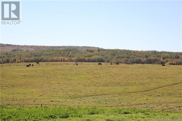 452060 Range Road 14, County Of, Alberta  T0C 2V0 - Photo 27 - CA0188344