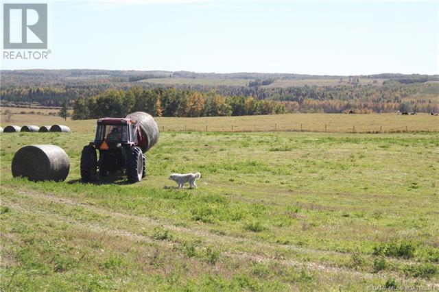 452060 Range Road 14, County Of, Alberta  T0C 2V0 - Photo 32 - CA0188344