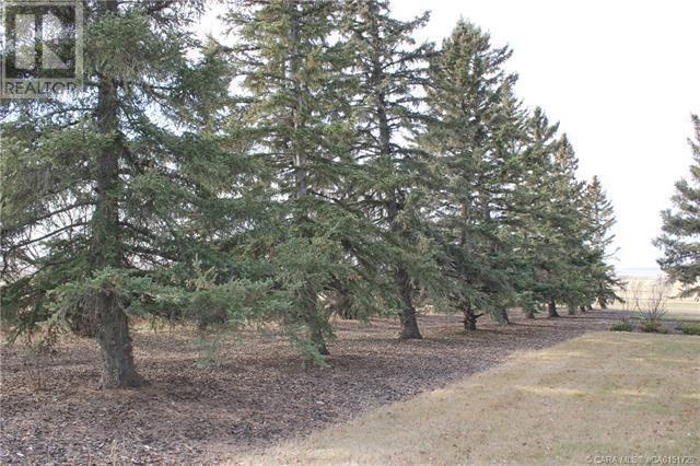 322071a Range Road 244, Rural Kneehill County, Alberta  T0M 2A0 - Photo 28 - CA0151729