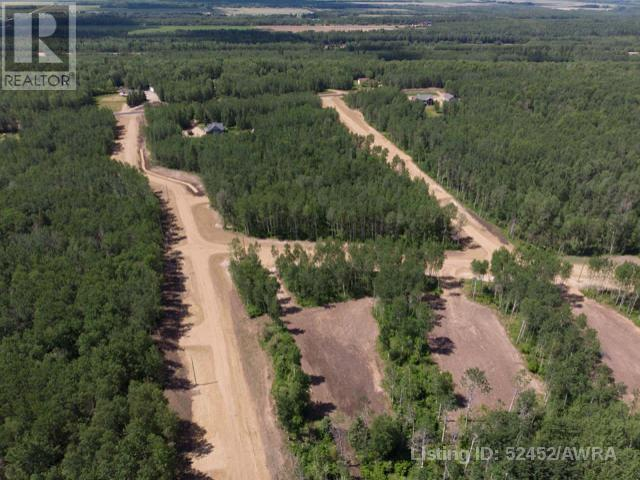 Lot 4 Range Rd 224, Rural Athabasca County, Alberta  T9S 2A6 - Photo 22 - AW52452