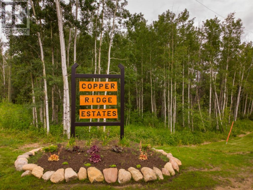 Lot 4 Range Rd 224, Rural Athabasca County, Alberta  T9S 2A6 - Photo 1 - AW52452