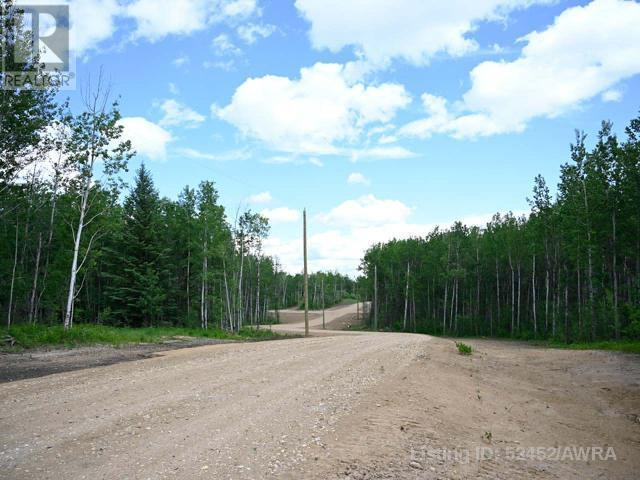 Lot 4 Range Rd 224, Rural Athabasca County, Alberta  T9S 2A6 - Photo 3 - AW52452