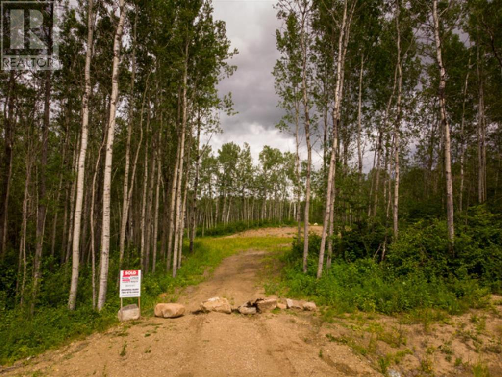 Lot 4 Range Rd 224, Rural Athabasca County, Alberta  T9S 2A6 - Photo 9 - AW52452