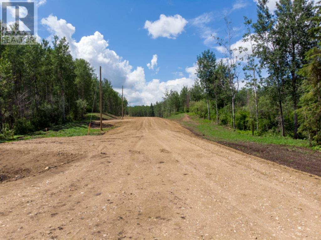 Lot 4 Range Rd 224, Rural Athabasca County, Alberta  T9S 2A6 - Photo 12 - AW52452