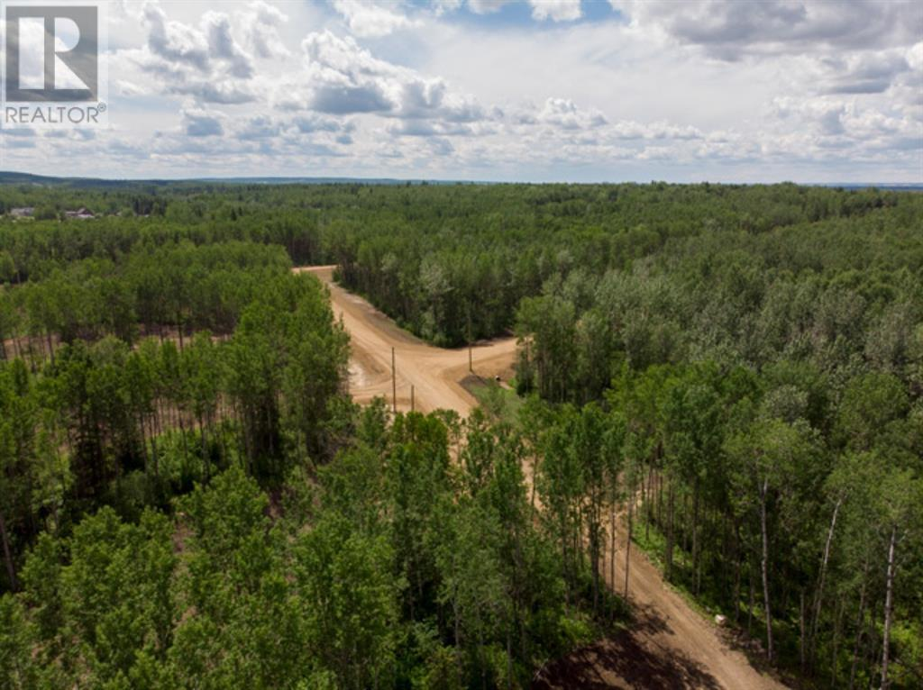 Lot 4 Range Rd 224, Rural Athabasca County, Alberta  T9S 2A6 - Photo 20 - AW52452