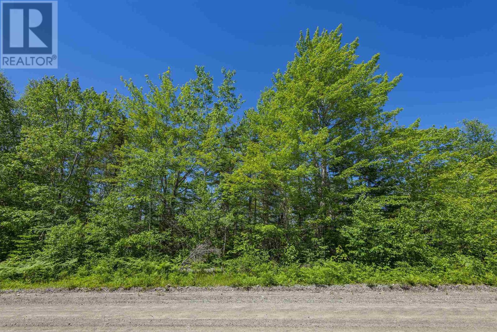 Lot Norwood Road, Maxwellton, Nova Scotia  B0W 2L0 - Photo 1 - 202015161