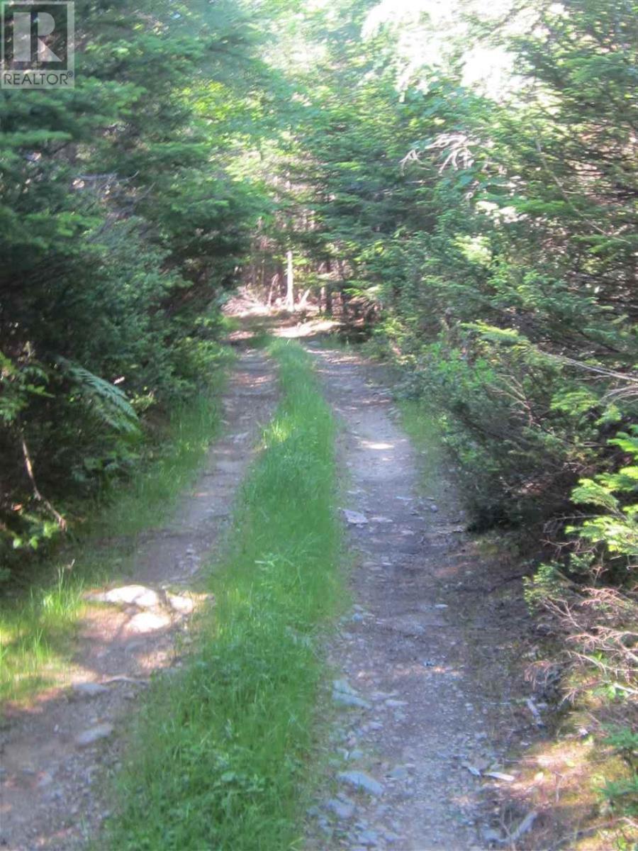 Mountain Road, The Points West Bay, Nova Scotia  B0E 3B0 - Photo 2 - 202015927