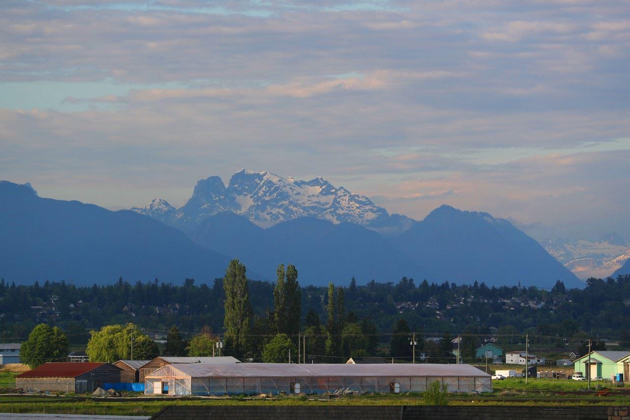 3346 164a Street, Surrey, British Columbia  V3Z 0G5 - Photo 2 - R2460510
