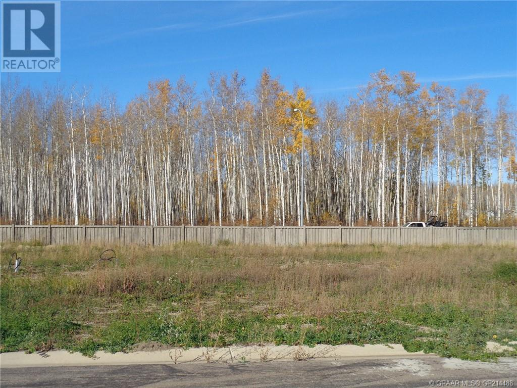 17 Bear Creek Drive, High Level, Alberta  T0H 1Z0 - Photo 1 - GP214488
