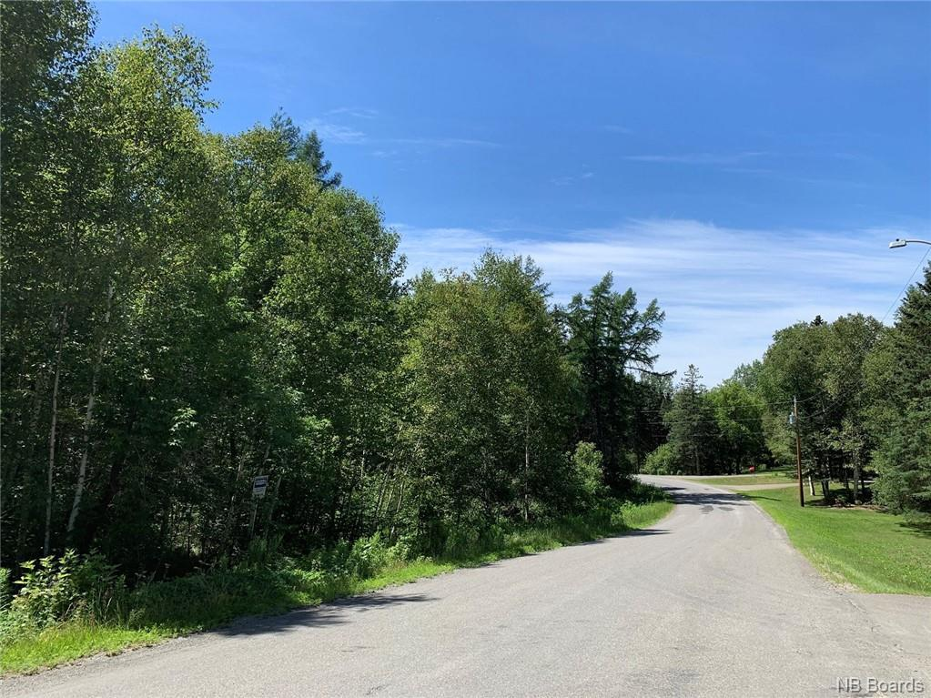Lot #92-1 Woodland Hill, Perth-Andover, New Brunswick  E7H 7H5 - Photo 5 - NB045687