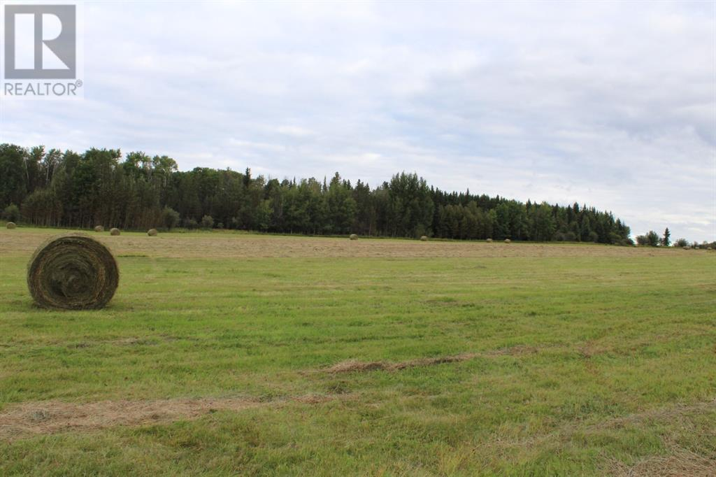 Range Rd 175, Rural Yellowhead County, Alberta  T7E 3E8 - Photo 3 - AW49148