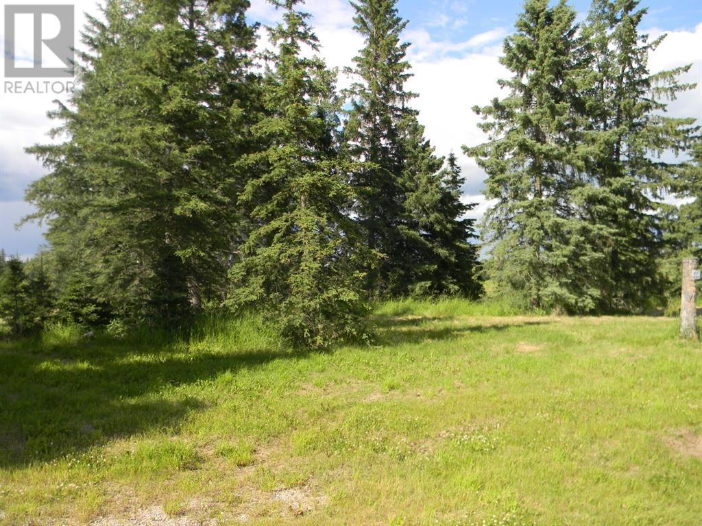 108 Meadow Ponds  Drive, Rural Clearwater County, Alberta  T4T 1A7 - Photo 7 - A1021134