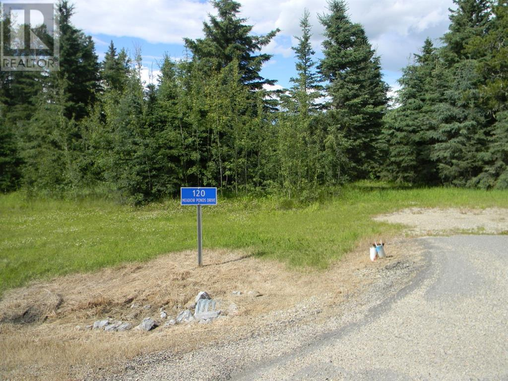 120 Meadow Ponds  Drive, Rural Clearwater County, Alberta  T4T 1A7 - Photo 1 - A1021107