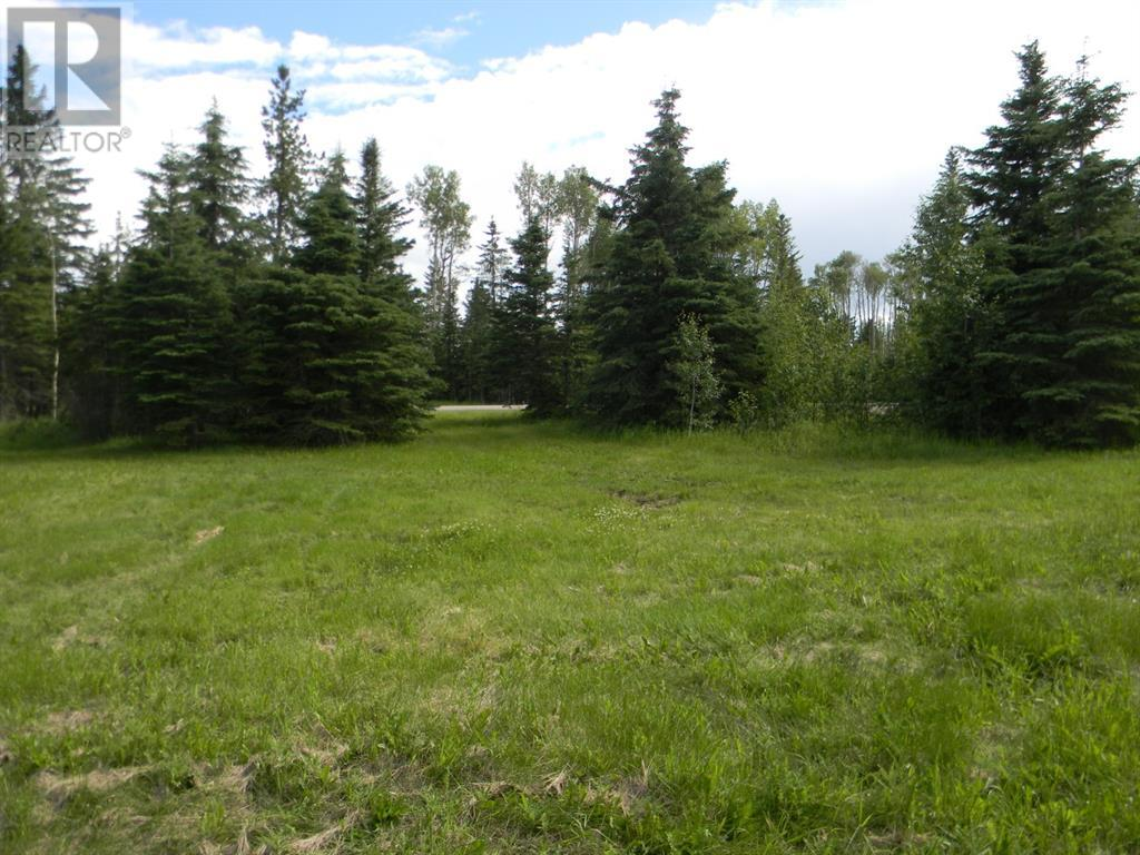 120 Meadow Ponds  Drive, Rural Clearwater County, Alberta  T4T 1A7 - Photo 5 - A1021107