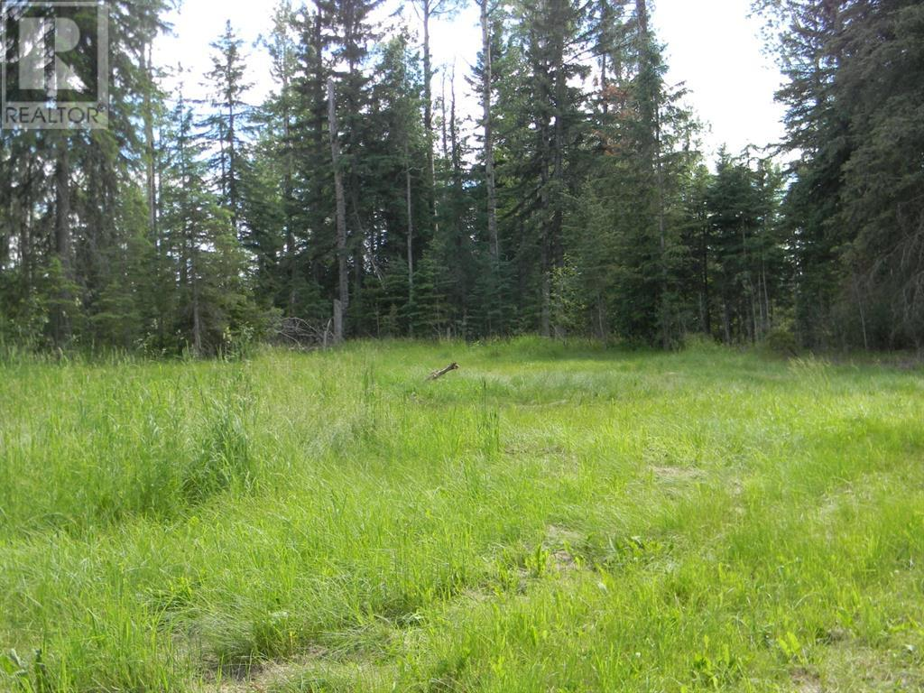 131 Meadow Ponds  Drive, Rural Clearwater County, Alberta  T4T 1A7 - Photo 3 - A1021056