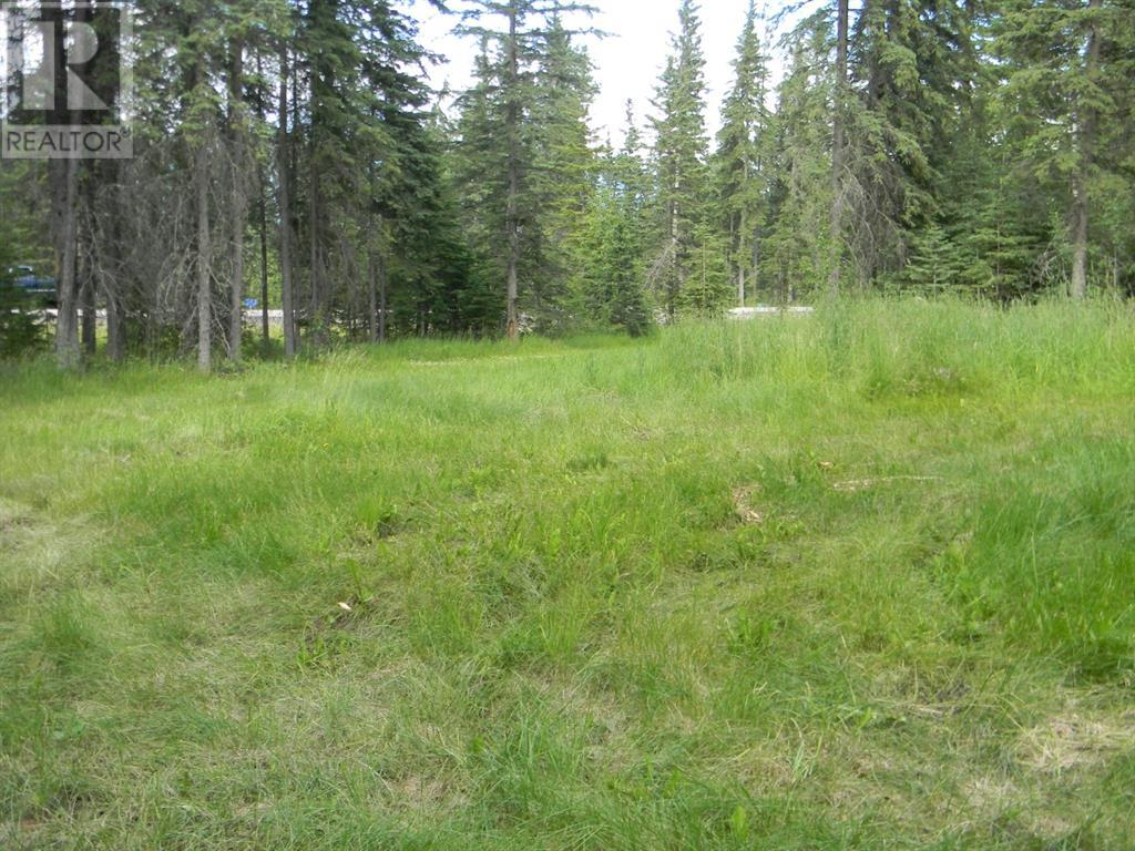 131 Meadow Ponds  Drive, Rural Clearwater County, Alberta  T4T 1A7 - Photo 6 - A1021056