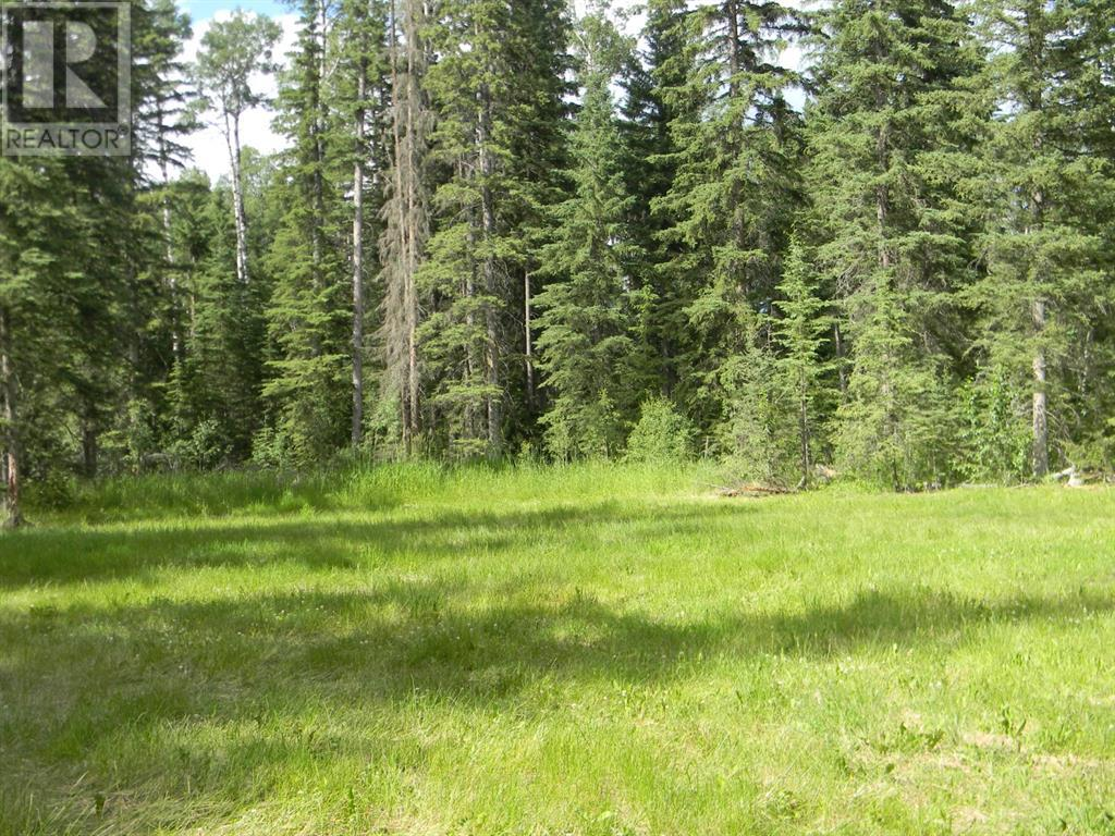 136 Meadow Ponds  Drive, Rural Clearwater County, Alberta  T4T 1A7 - Photo 10 - A1021088