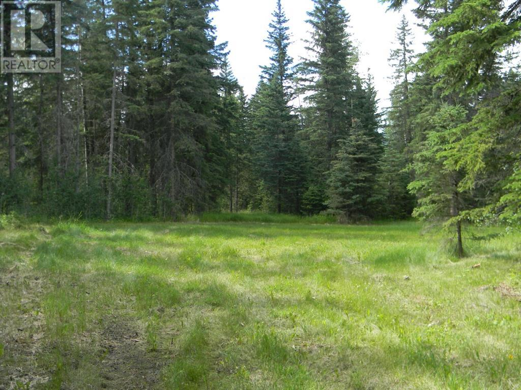 136 Meadow Ponds  Drive, Rural Clearwater County, Alberta  T4T 1A7 - Photo 11 - A1021088