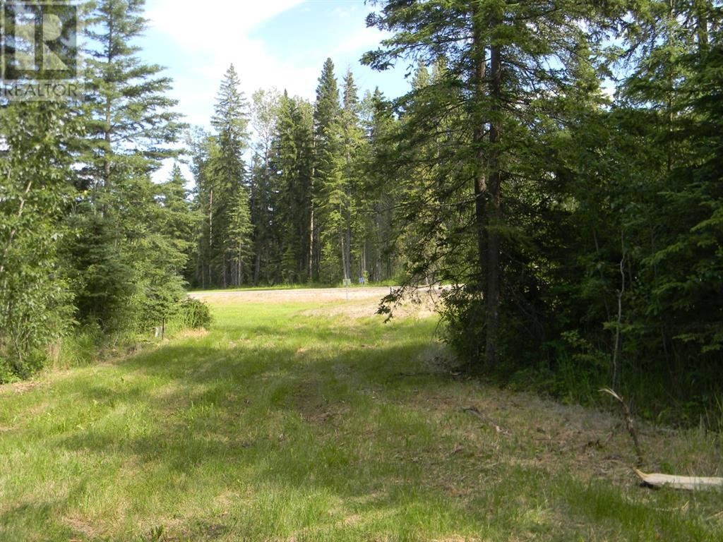 136 Meadow Ponds  Drive, Rural Clearwater County, Alberta  T4T 1A7 - Photo 12 - A1021088