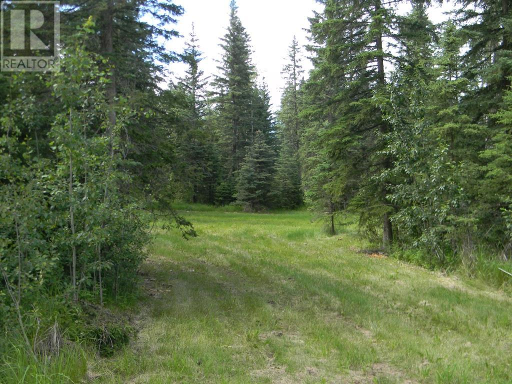 136 Meadow Ponds  Drive, Rural Clearwater County, Alberta  T4T 1A7 - Photo 9 - A1021088