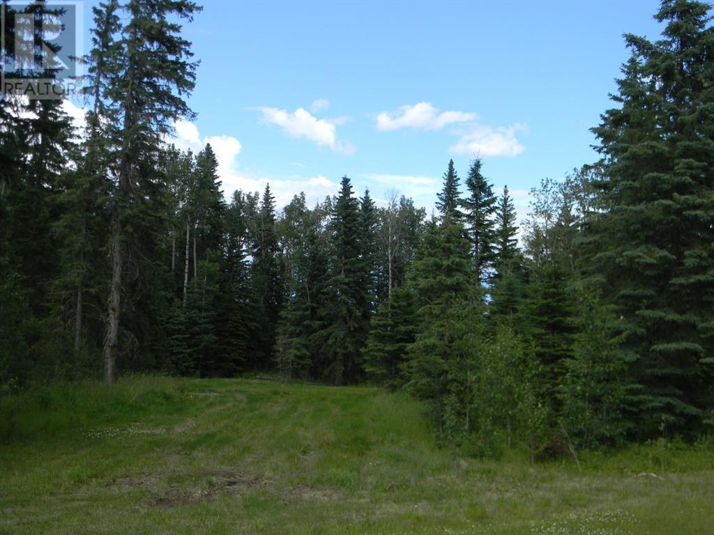 132 Meadow Ponds  Drive, Rural Clearwater County, Alberta  T4T 1A7 - Photo 4 - A1021089