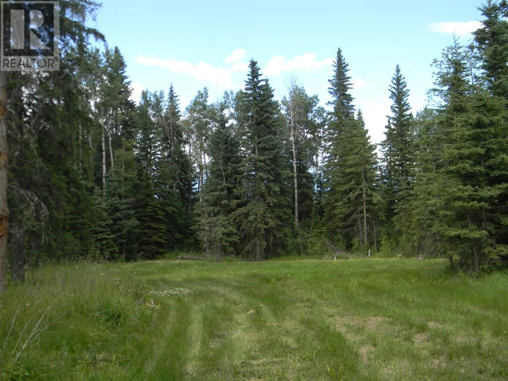 132 Meadow Ponds  Drive, Rural Clearwater County, Alberta  T4T 1A7 - Photo 8 - A1021089