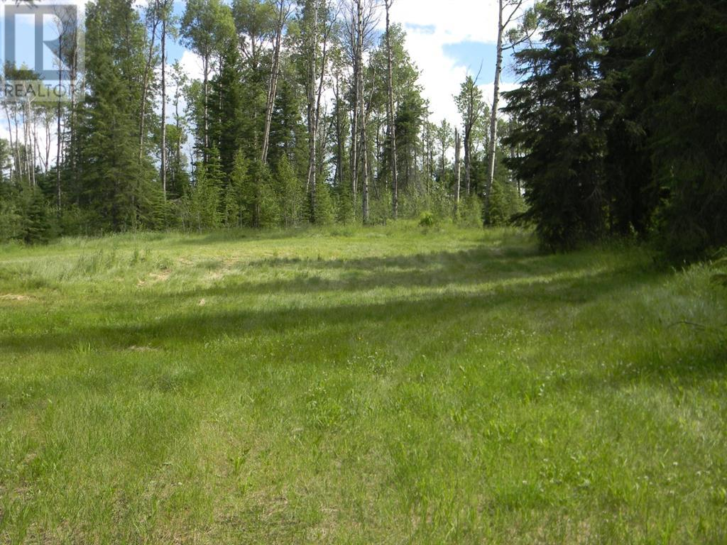 127 Meadow Ponds  Drive, Rural Clearwater County, Alberta  T4T 1A7 - Photo 4 - A1021050