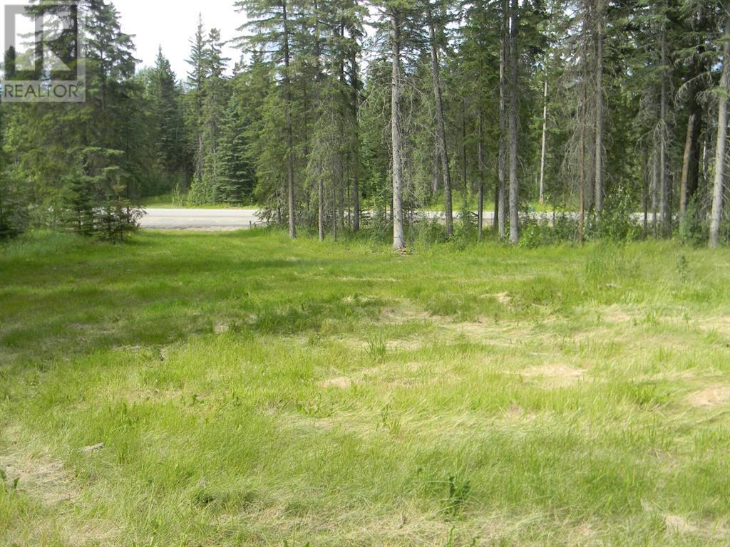 127 Meadow Ponds  Drive, Rural Clearwater County, Alberta  T4T 1A7 - Photo 5 - A1021050