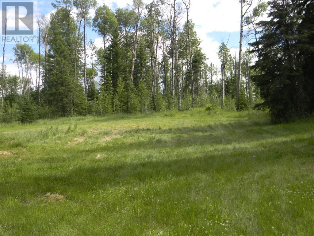 127 Meadow Ponds  Drive, Rural Clearwater County, Alberta  T4T 1A7 - Photo 7 - A1021050