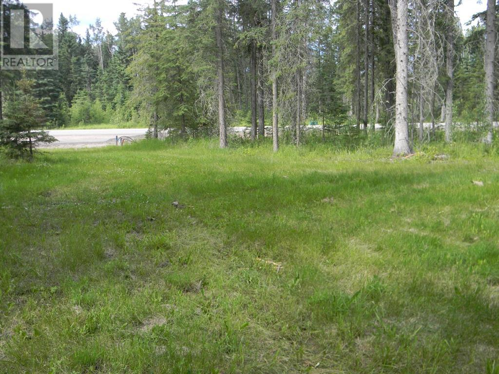 127 Meadow Ponds  Drive, Rural Clearwater County, Alberta  T4T 1A7 - Photo 8 - A1021050