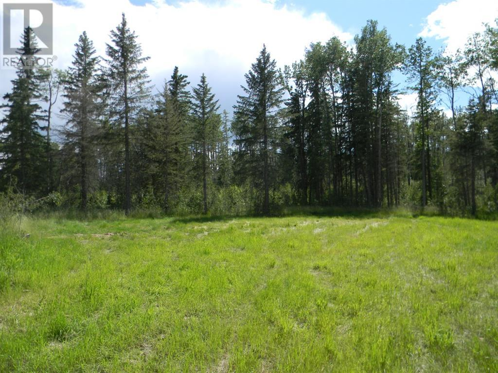 115 Meadow Ponds  Drive, Rural Clearwater County, Alberta  T4T 1A7 - Photo 1 - A1020971