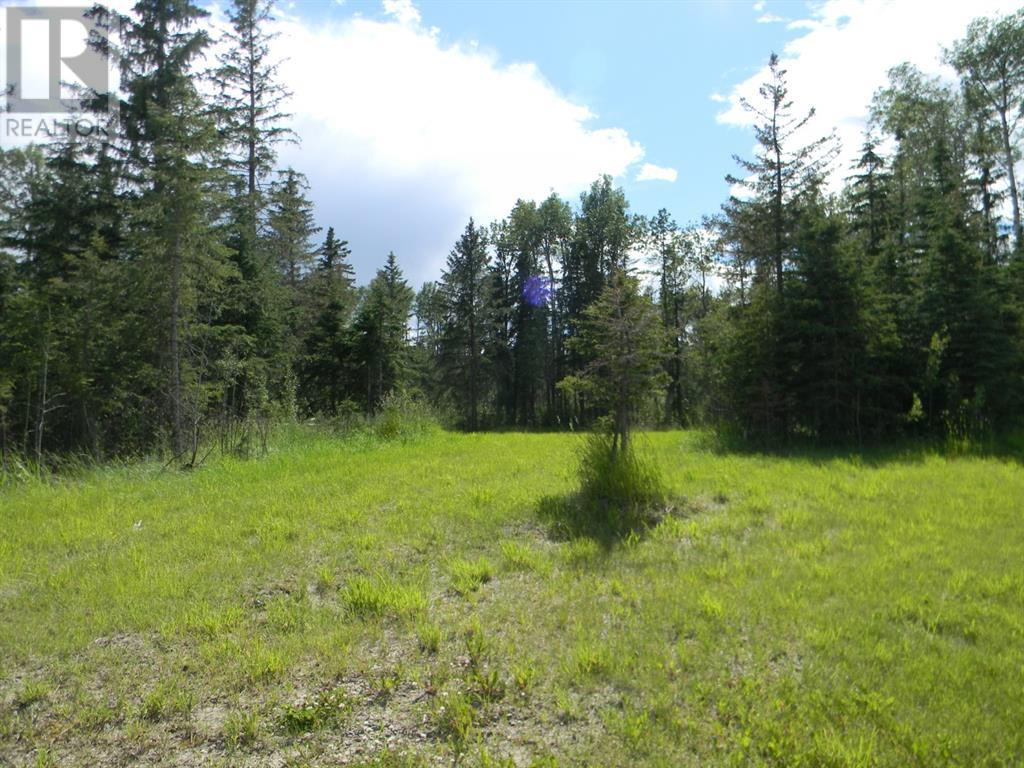 115 Meadow Ponds  Drive, Rural Clearwater County, Alberta  T4T 1A7 - Photo 6 - A1020971