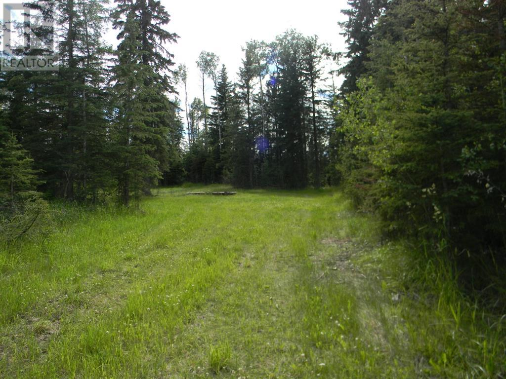 123 Meadow Ponds  Drive, Rural Clearwater County, Alberta  T4T 1A7 - Photo 4 - A1021042