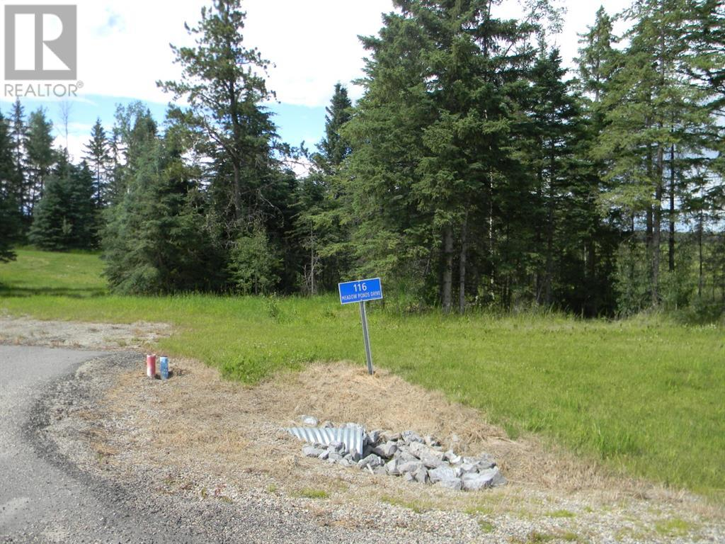 116 Meadow Ponds  Drive, Rural Clearwater County, Alberta  T4T 1A7 - Photo 1 - A1021112