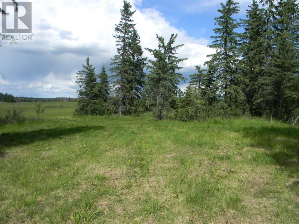 116 Meadow Ponds  Drive, Rural Clearwater County, Alberta  T4T 1A7 - Photo 4 - A1021112
