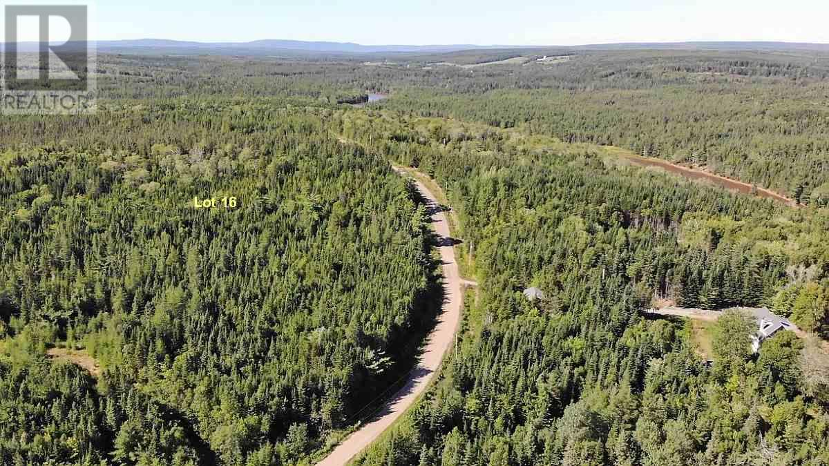 Lot 16 Helmuts Lane, Cleveland, Nova Scotia  B0E 1J0 - Photo 11 - 202017571