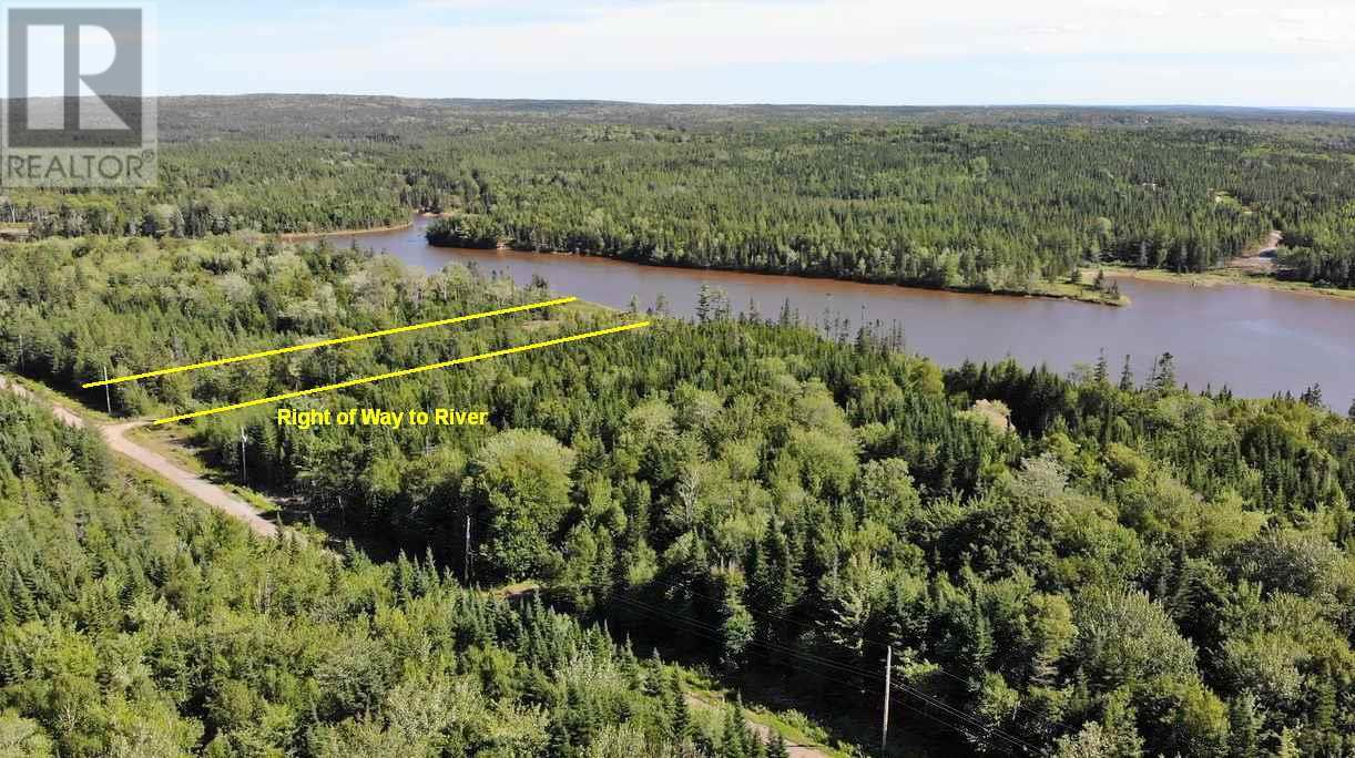 Lot 16 Helmuts Lane, Cleveland, Nova Scotia  B0E 1J0 - Photo 17 - 202017571