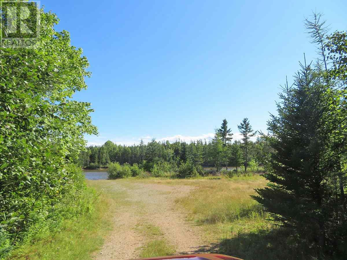 Lot 16 Helmuts Lane, Cleveland, Nova Scotia  B0E 1J0 - Photo 18 - 202017571