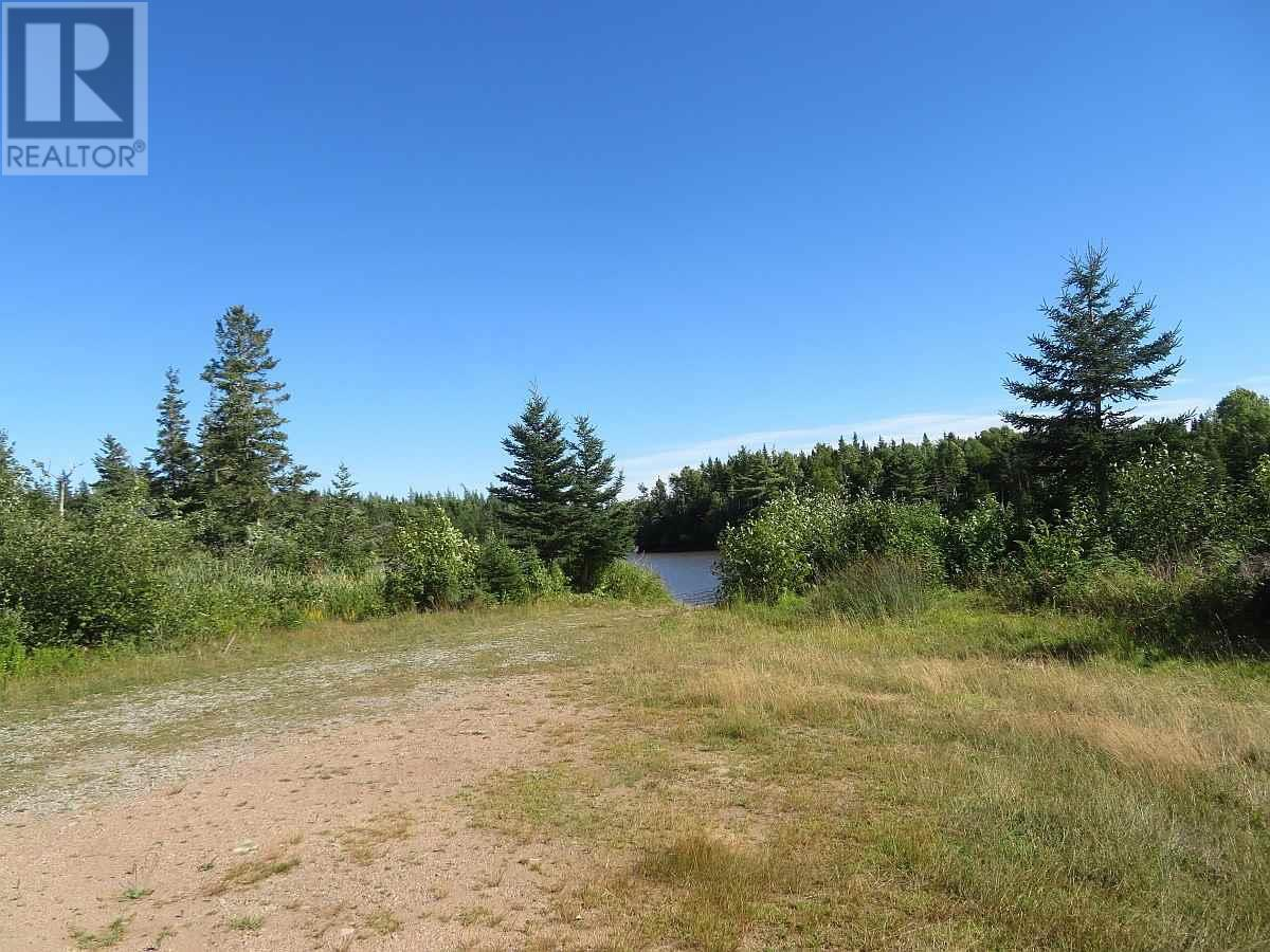 Lot 16 Helmuts Lane, Cleveland, Nova Scotia  B0E 1J0 - Photo 19 - 202017571
