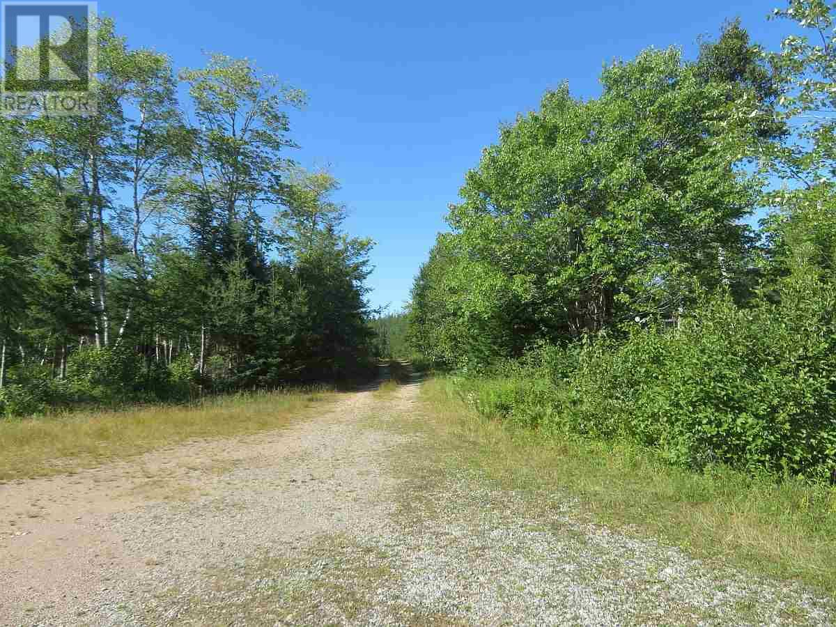 Lot 16 Helmuts Lane, Cleveland, Nova Scotia  B0E 1J0 - Photo 20 - 202017571