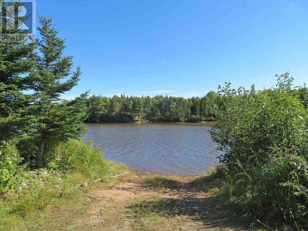 Lot 16 Helmuts Lane, Cleveland, Nova Scotia  B0E 1J0 - Photo 21 - 202017571