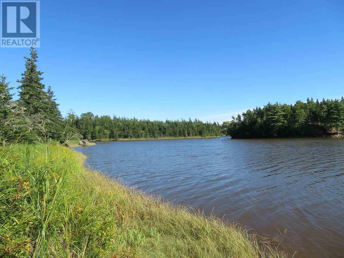 Lot 16 Helmuts Lane, Cleveland, Nova Scotia  B0E 1J0 - Photo 22 - 202017571