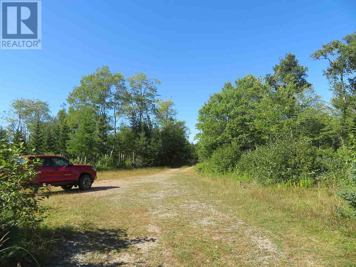 Lot 16 Helmuts Lane, Cleveland, Nova Scotia  B0E 1J0 - Photo 24 - 202017571