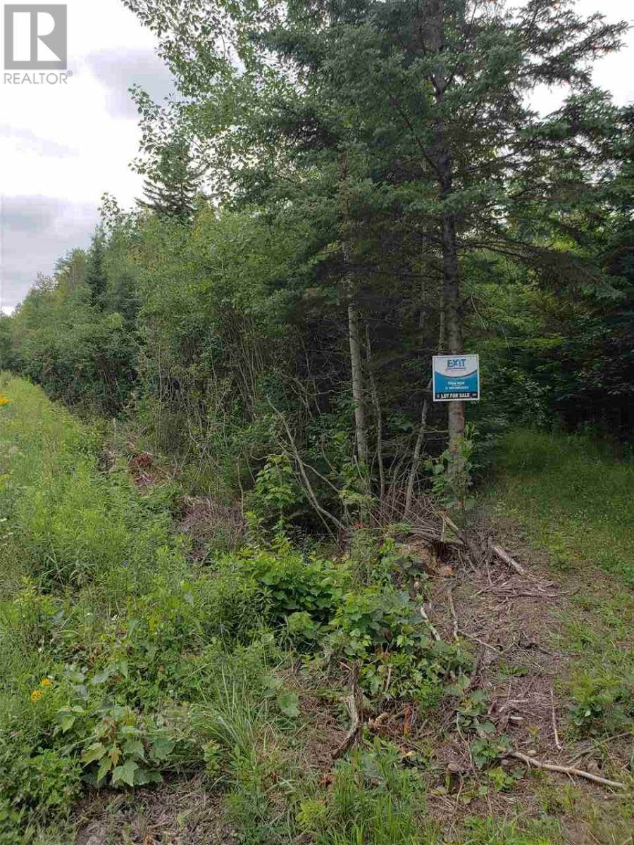 Cole Road, Meaghers Grant, Nova Scotia  B0N 1V0 - Photo 1 - 202000040